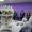 В Сыктывкарском медколледже открыли уникальные мастерские