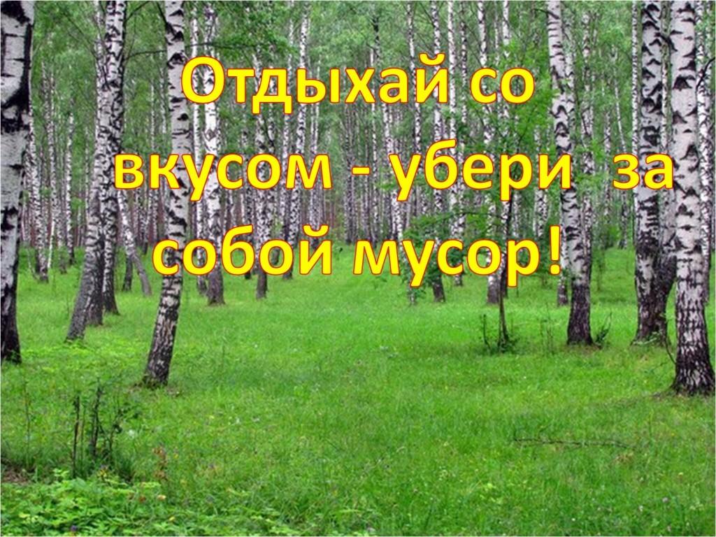 Ермакова Нина