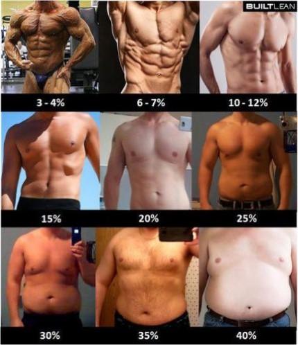 как определить жир на животе или кожаную