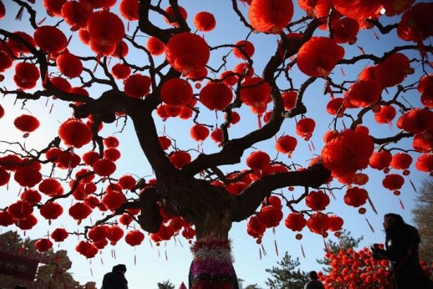 новогоднее дерево в китае